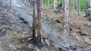 Овладян е големият пожар край Девин