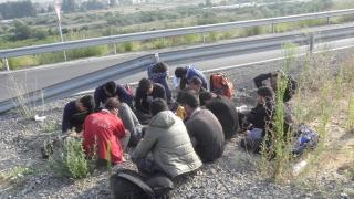 Арестуваха 7 каналджии с близо 50 чужденци на път за Сърбия