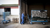 Коронавирус и във ферма за норки в Орегон