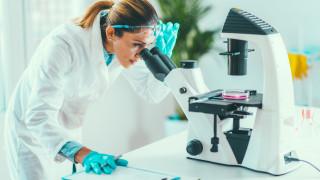 Правителството отпуска над 6 млн. лева за наука