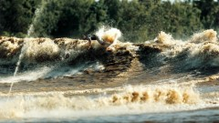 Бразилия търси международна помощ за Амазонската джунгла на Cop26