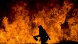 38 000 евакуирани заради горския пожар в Калифорния