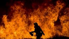 Пожарите в Калифорния се разпростряха на по-голяма площ от Ню Йорк