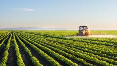 2% спад на реализираната крайна продукция в селското стопанство през 2018 г.