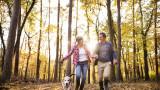Колко часа природа седмично са достатъчни за добро здраве