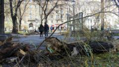 Паднало дърво остави без ток няколко столични квартала