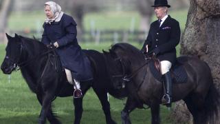 Кралица Елизабет яхна кон на 90 години (ВИДЕО)