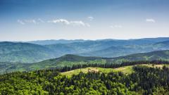 Вековните букови гори в Балкана вече част от световното наследство на ЮНЕСКО