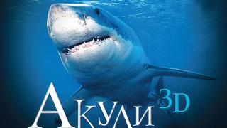 Стряскащи акули на 3D IMAX
