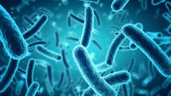Неизвестен вирус върлува из Боливия
