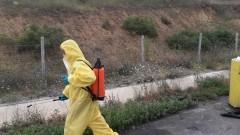 Слави Трифонов учреди партия при строги мерки за сигурност и без медии; Над 46 000 прасета по селата паднаха жертва на чумата