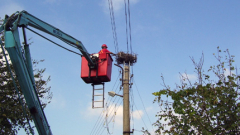 Платформи за гнезда спасяват щъркели в Шумен