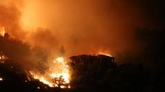 Хиляди евакуирани заради невиждан горски пожар в Испания