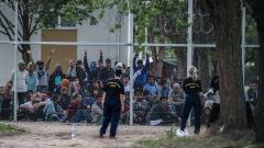 Унгарската полиция поиска 7 българи да бъдат обвинени в убийство