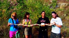 Откриха рекордно дълга змия край Бургас
