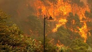 Пожарите са терористичен акт, подозират в Гърция
