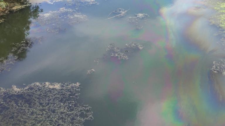 Река Русенски Лом отново потече в син цвят