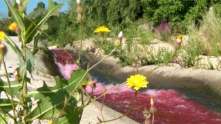 Владайска река потече кървавочервена