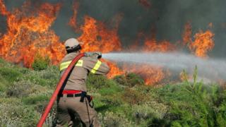 Гърция взима спешни мерки срещу бъдещи пожари