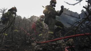 """""""Нашият край е близо"""": Огненият ад в Гърция няма край"""