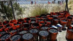 Извънредно положение в Санта Барбара заради разлив на петрол
