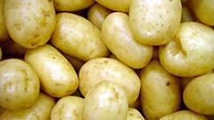 """Пазарът залят с вносни картофи с надписи """"родопски"""""""
