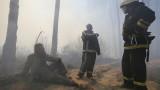 Опасно замърсяване в Киев от пожарите край Чернобил