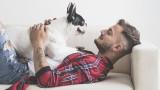 Кучетата, епилептичните пристъпи и как домашните любимци могат да спасят живот