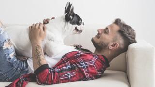Как кучетата могат да ни спасят живота