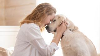 С куче живеем по-дълго