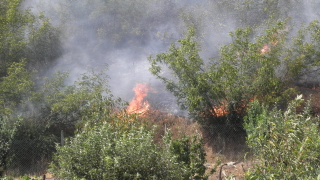 Все още има пожар край Ардино