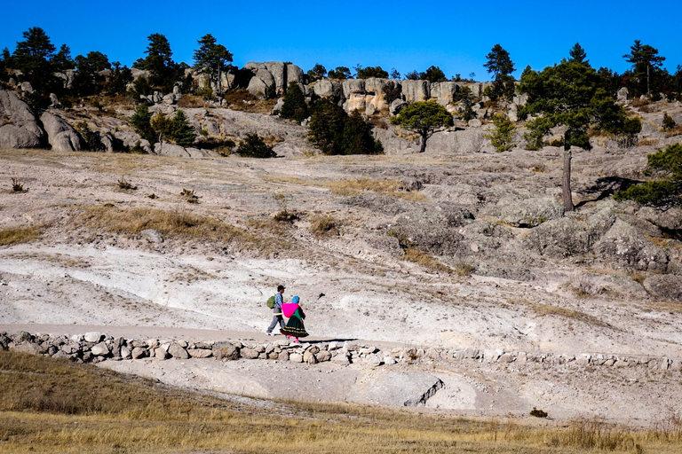 Природата в тези части на Мексико е доста негостоприемна и предизвикателна.