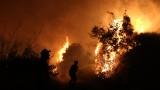 Силни ветрове затрудняват гасенето на 40-те пожара в Гърция