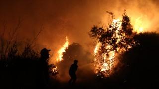 55 нови пожара са възникнали в Гърция за 24 часа
