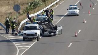 По-строги закони срещу избиването на пътя искат експерти