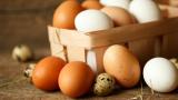 Заразените яйца стигнали и до Великобритания и Франция