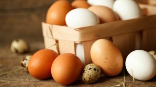 БАБХ не знаели има ли заразени яйца в търговската мрежа