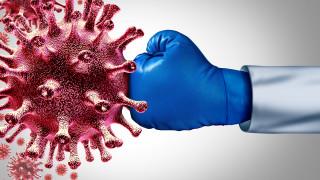 Хранителните вещества на здравата имунна система