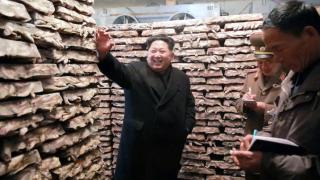 Северна Корея може да стане следващият апетитен развиващ се пазар