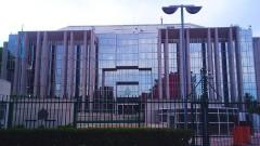 Интерпол задържа 200 души за трафик на хора