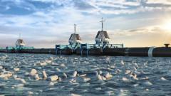 Огромна машина ще почиства Тихия океан от пластмасата