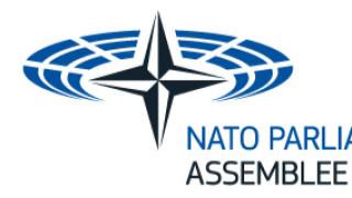 ПА на НАТО очаква мрачни перспективис Русия и предвижда възпиранеи санкции