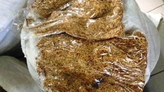 Намериха 84 кг тютюн и близо 600 кутии нелегални цигари в Игнатиево