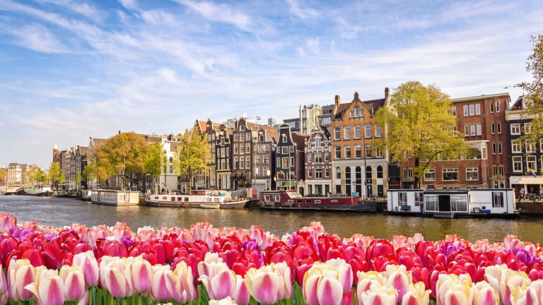 Полицията в Амстердам разпитва мъж, задържан по подозрения в хвърляне