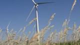 Бум на вятърната енергия в Мексико