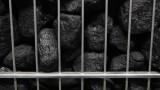 Заради дефицита на газ: Европа изстрелва употребата на въглища