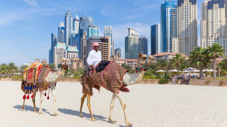 В Дубай има повече жилища, отколкото купувачи. И сега строителството в емирството ще бъде ограничено