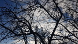 Облачно и ветровито