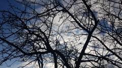 Облачно, слаби превалявания от дъжд