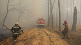 В Чернобилската зона все още тлеят четири огнища от пожара